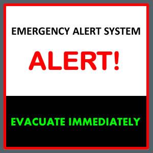 Forex alert website